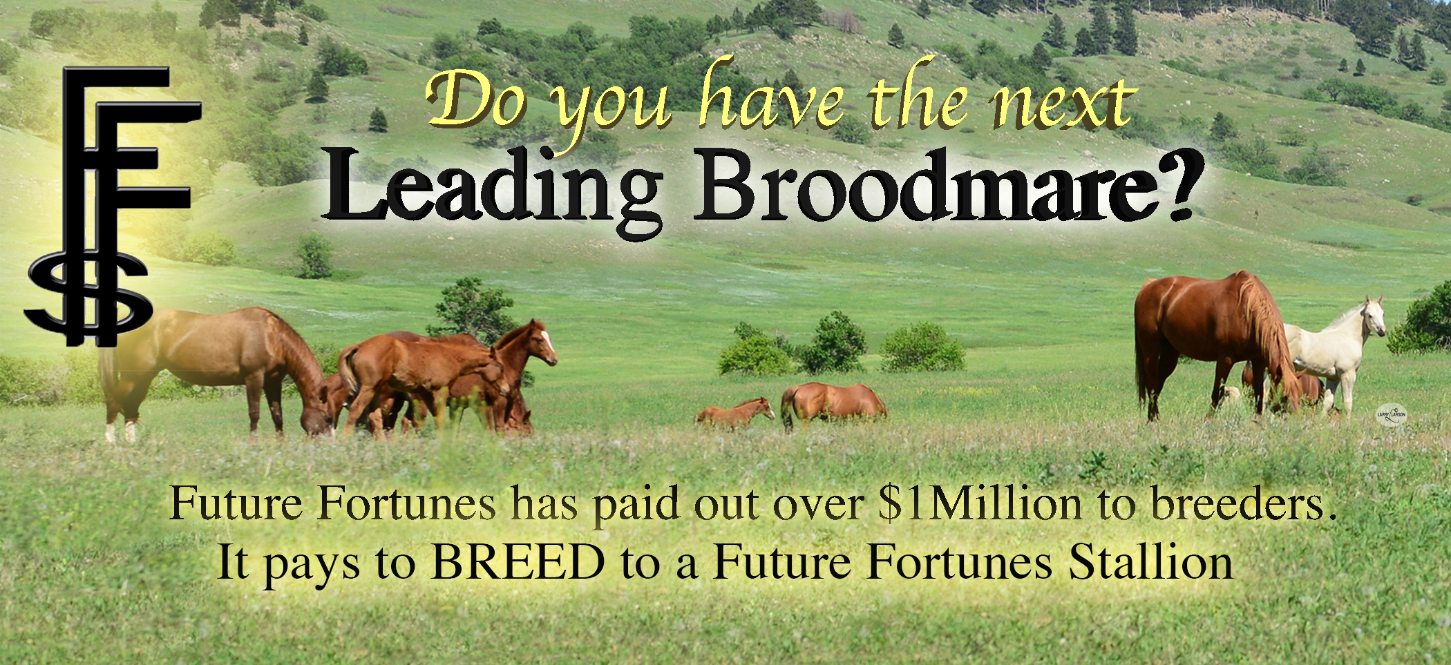 It PAYS to Breed to a FF Stallion!