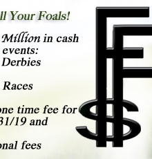 Time to enroll your foals!